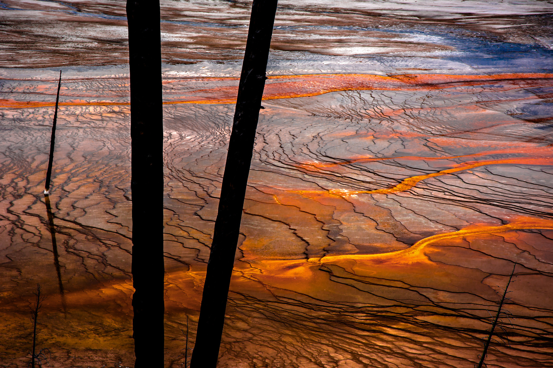 Delta at the edge of the Grand Prismatic Spring